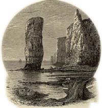 Engraving of Old Harry rock, Purbeck